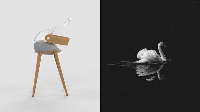 Swan_1