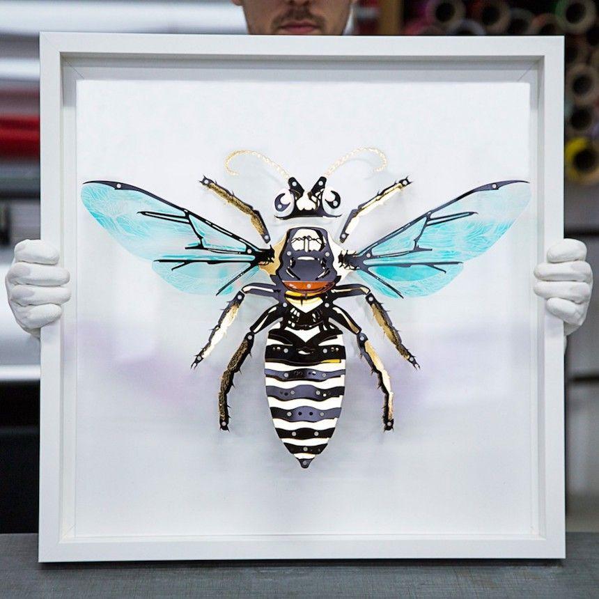 Entomologie-Pierre Brault 3