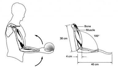 Características física diseño