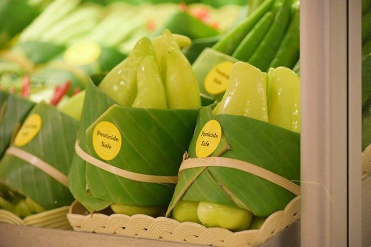 Empaques hojas plátano